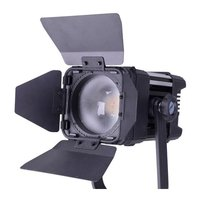 LEDGO 30W Colour Variable LED Fresnel light
